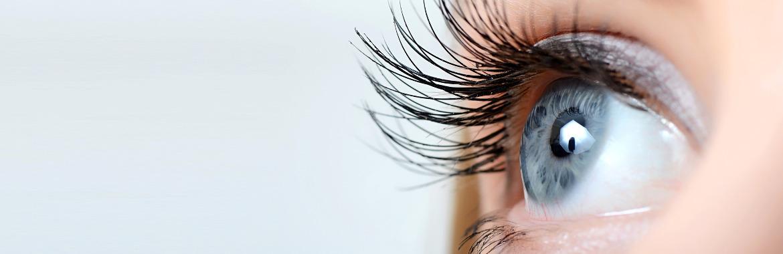 Contact foch votre sp cialiste lentilles de contact - A quel age peut on porter des lentilles de contact ...